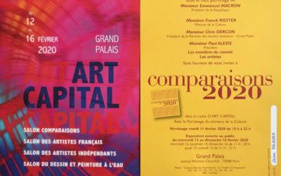 Reine Mazoyer exposera au Salon Comparaisons du 12 au 16 février 2020 dans le cadre de Art Capital